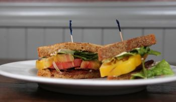 Rockne Roll // DYV