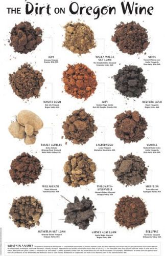 SOUVENIR: Purchase 'The Dirt on Oregon Wine' poster (12 X 18 inches), a visual display of various soils found throughout the state's wine country. Click on the poster to shop.