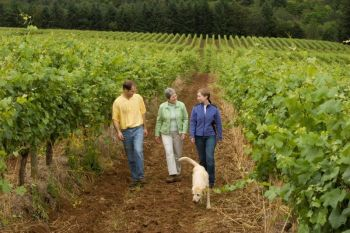 <b>Susan Sokol Blosser walks the vineyard with her children, Alex and Alison, and Andre, Alex's dog.</b>